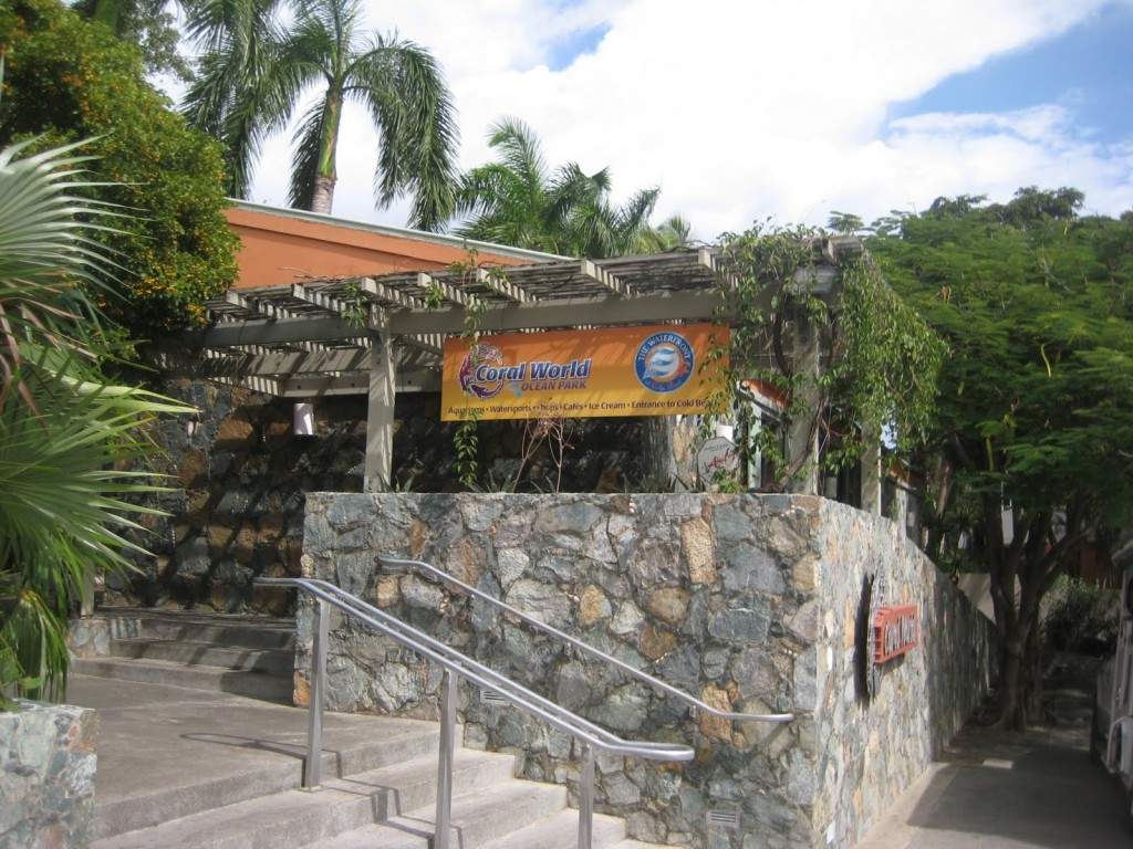 Burger_Conquest_Coral_World_Shark_bar_St_Thomas_Matt_and_Ginas_Wedding_141