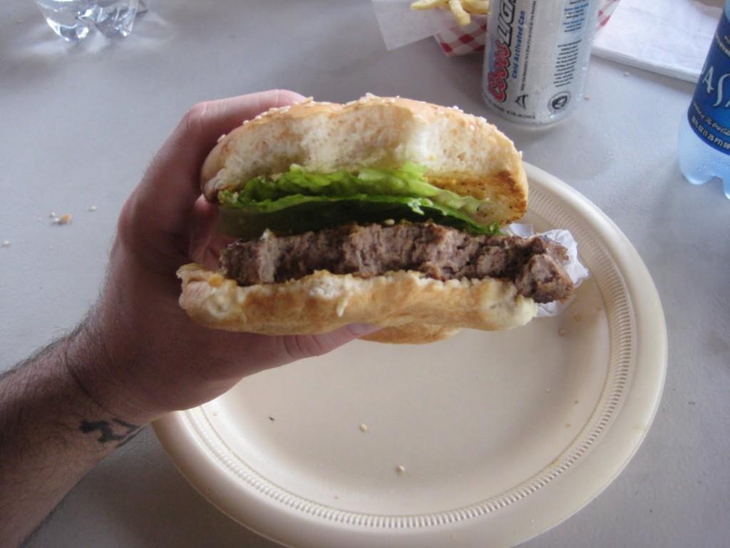 Burger_Conquest_Coral_World_Shark_bar_St_Thomas_Matt_and_Ginas_Wedding_173